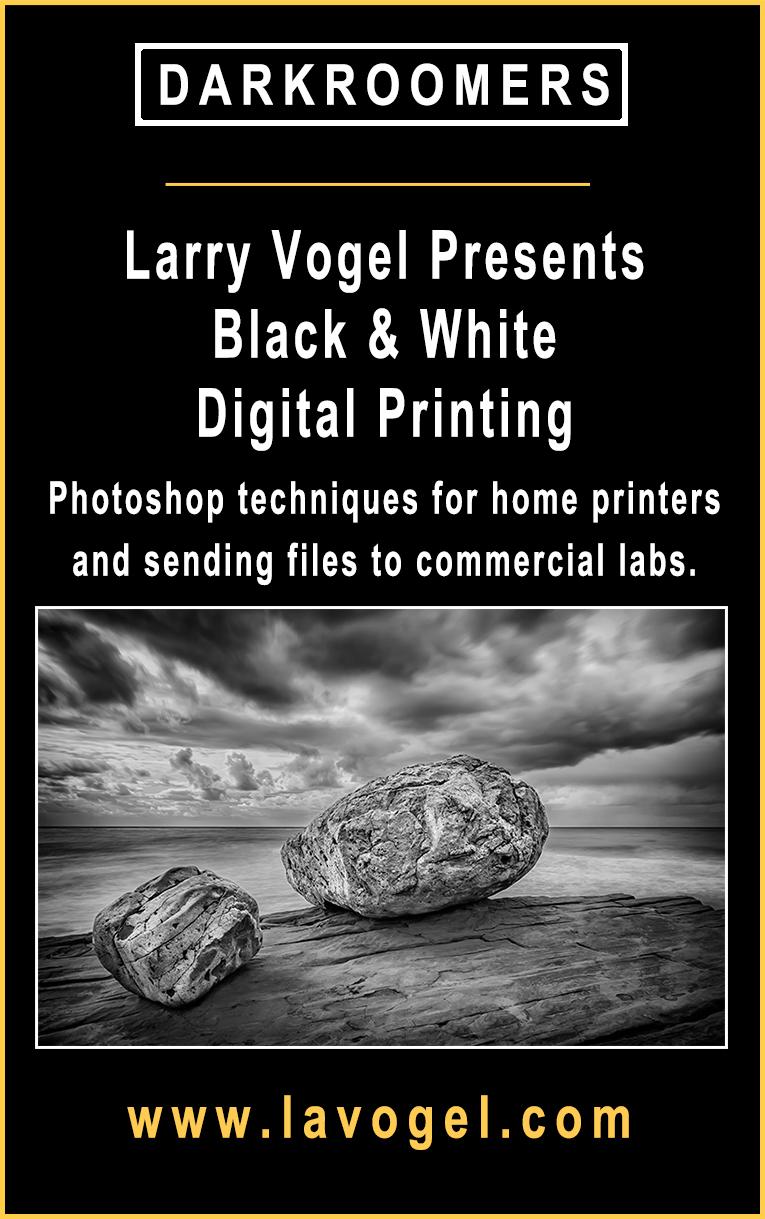 Black & White Digital Printing with Larry Vogel